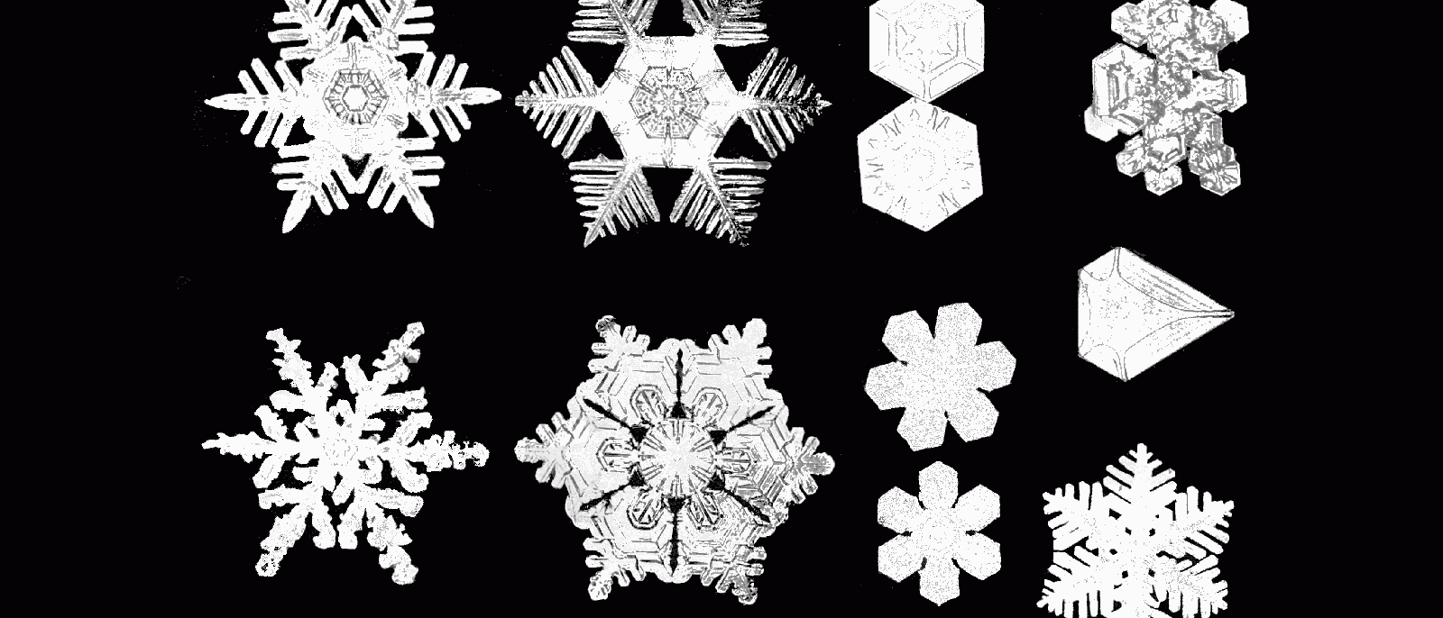 Snowflakes symbols of individual perfection aleph biocorpaavc Images