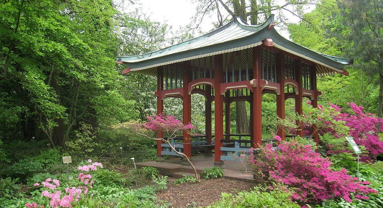 The Botanical Garden In Berlin Is So Exquisite Youu0027ll Want To Imagine It