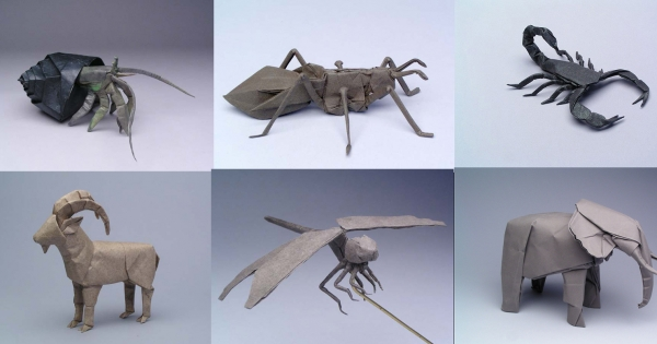 The Scientist Who Gave Up His Job To Fold Origami