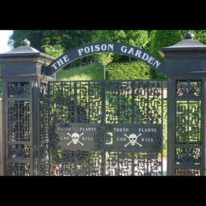 Pociones conjuros y venenos en la obra de william for Jardin shakespeare 2015