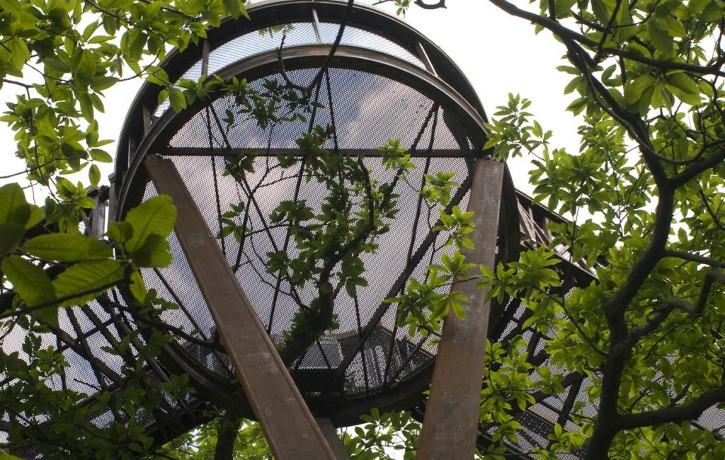 Tree Top Walkway Press opening