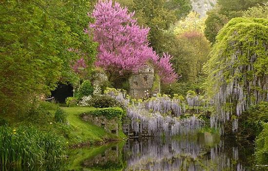 Ninfa_garden_image2_550