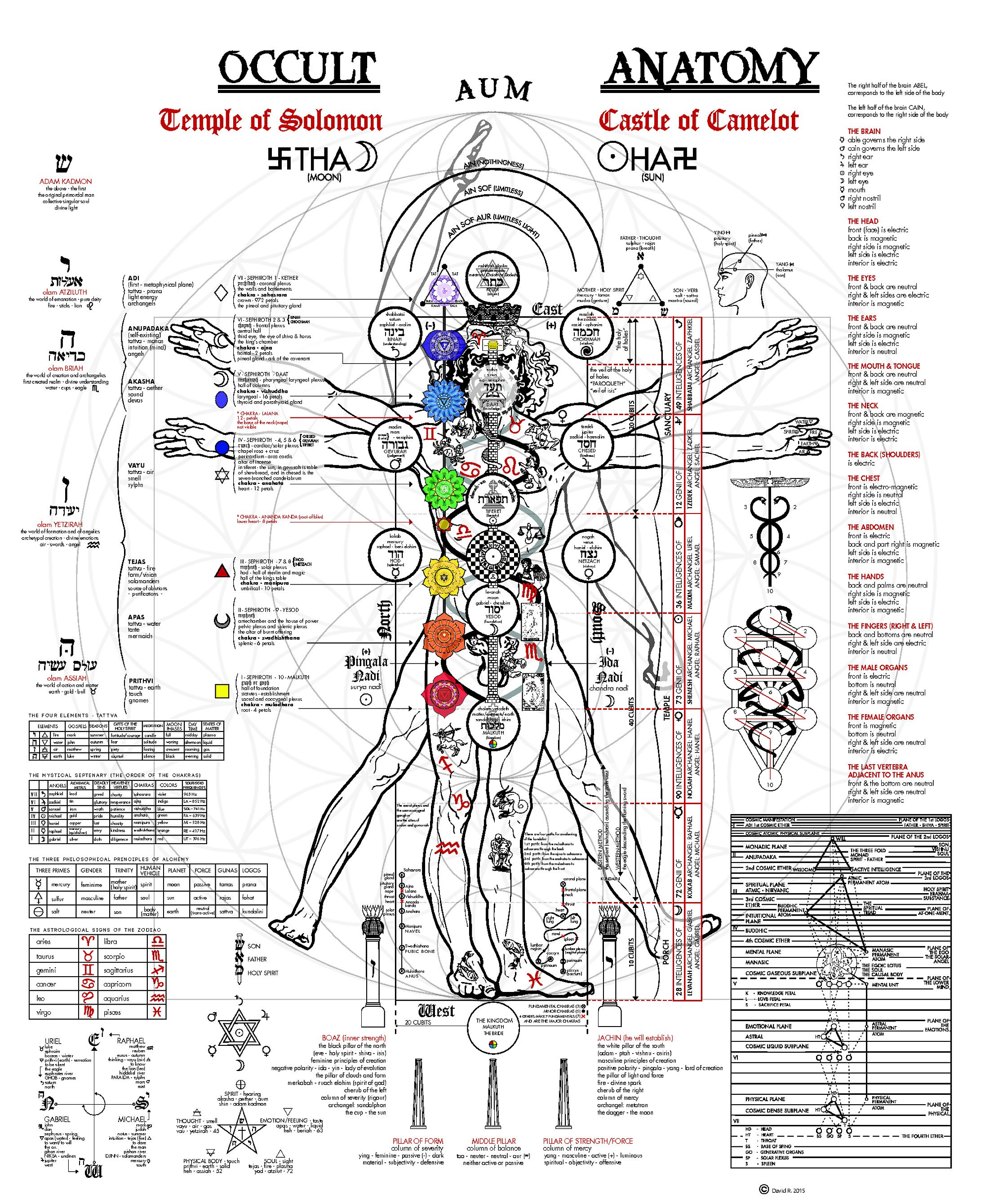 A Fascinating Illustration Of The Occult Anatomy Of Man Aleph