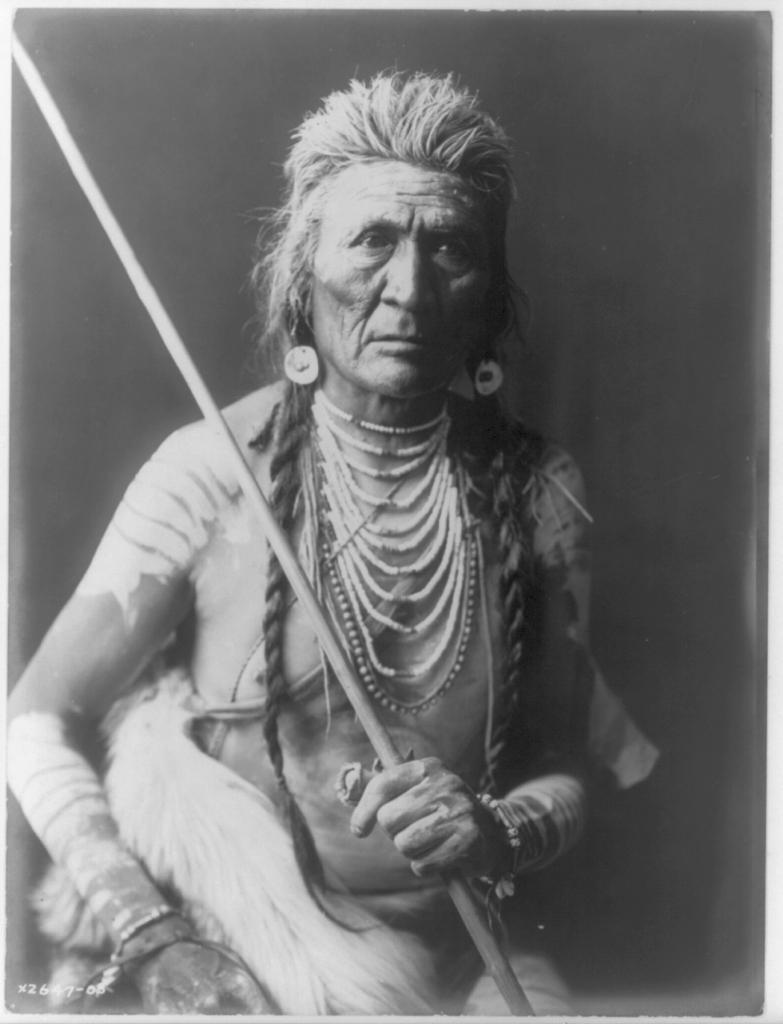 wolf 1908