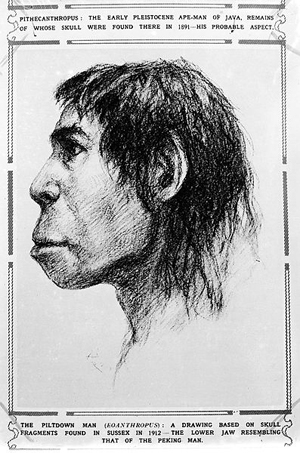 Illustration_of_Piltdown_Man_(Eoanthropus)._Wellcome_M0001114