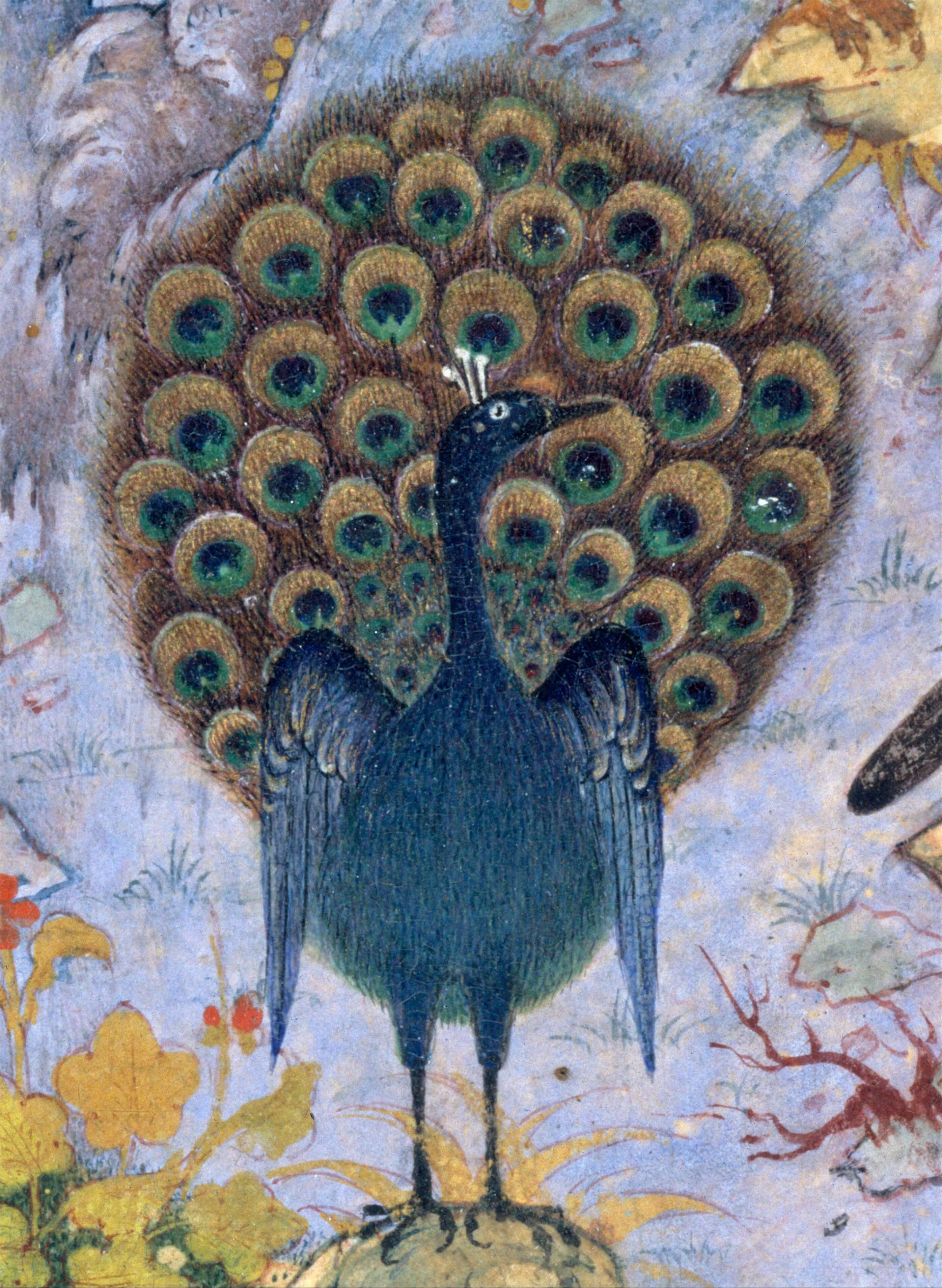 The Conference Of The Birds A Dazzling Persian Sufi Poem Aleph