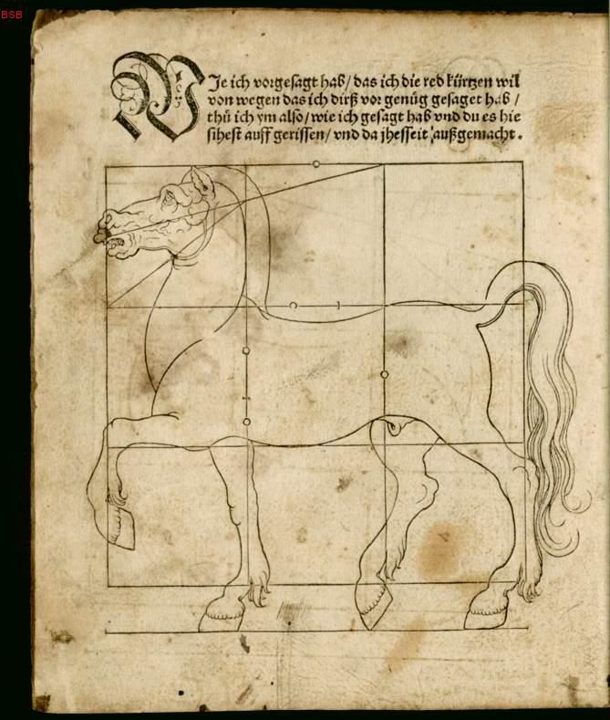 caballo2